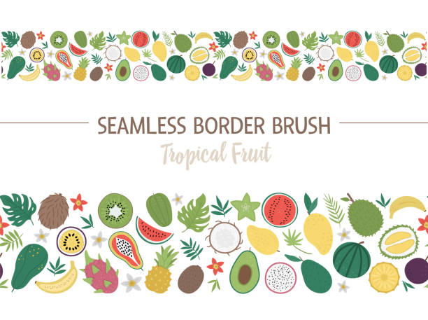 Vector seamless pattern brush with tropical fruit and berries with slices and halves. Jungle foliage border background. Hand drawn flat exotic plants texture. Bright childish horizontal digital paper Vector seamless pattern brush with tropical fruit and berries with slices and halves. Jungle foliage border background. Hand drawn flat exotic plants texture. Bright childish horizontal digital paper avocado borders stock illustrations