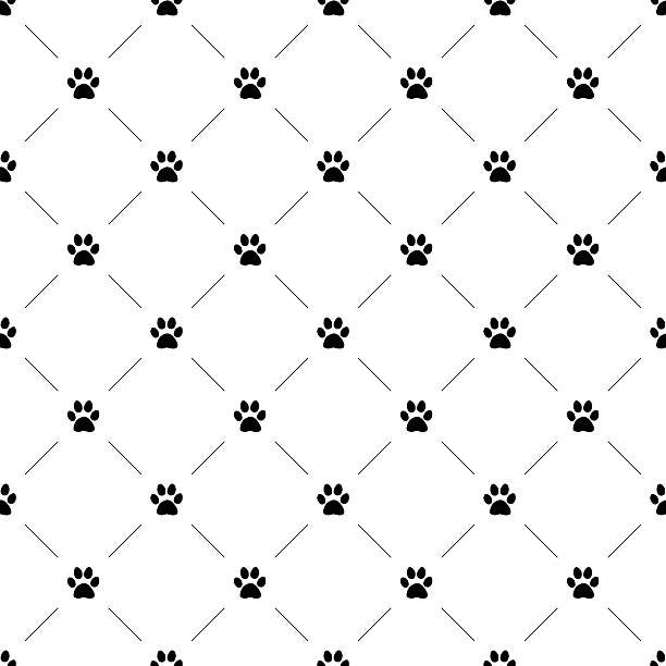 vector seamless pattern, cat paw - pets and animals stock illustrations