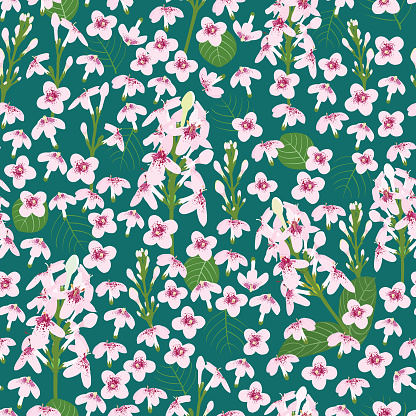 vector seamless pattern ditsy wild flower Tosca background