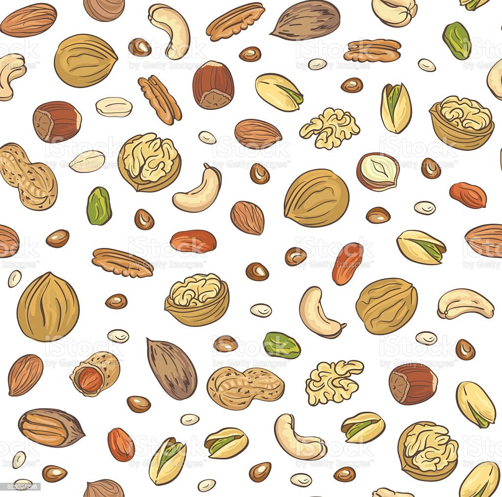 Vector seamless pattern hand sketched nuts on white background. vector art illustration