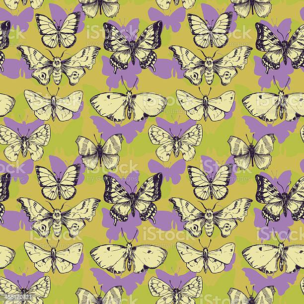 Vector seamless pattern of butterflies vector id455170721?b=1&k=6&m=455170721&s=612x612&h=c81gsnrvx2fh9ehhwd2kursqcn vrr0uxt9ntyfbl8o=