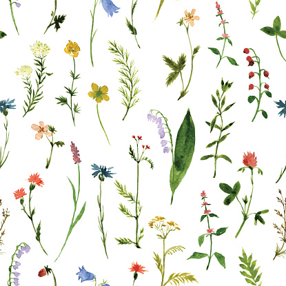 Vector seamless pattern of different colorful flowers