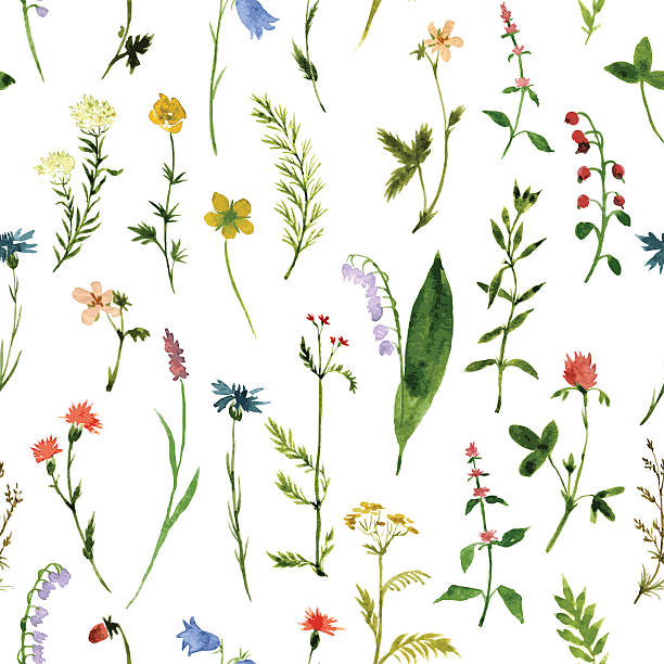 Vector seamless pattern of different colorful flowers vector seamless pattern with watercolor wild flowers and grass, hand drawn vector background single flower stock illustrations