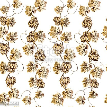 Vector seamless pattern of golden grape branch. Wineyard retro wallpaper. Garden background of Grape vine on white.