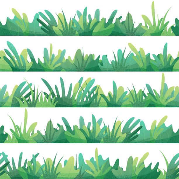 vector seamless pattern of grass. - backyard stock illustrations