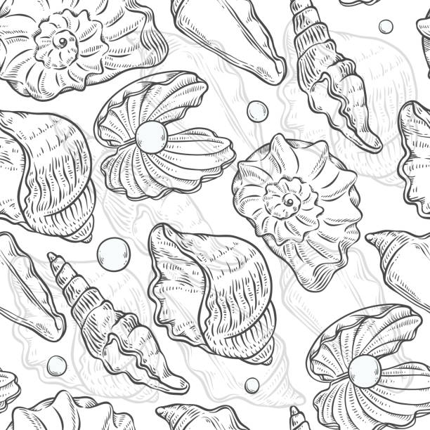 Vector seamless pattern sea shells and pearls different shapes. Clamshells monochrome black white outline sketch illustration isolated on white background for design on marine theme. vector art illustration