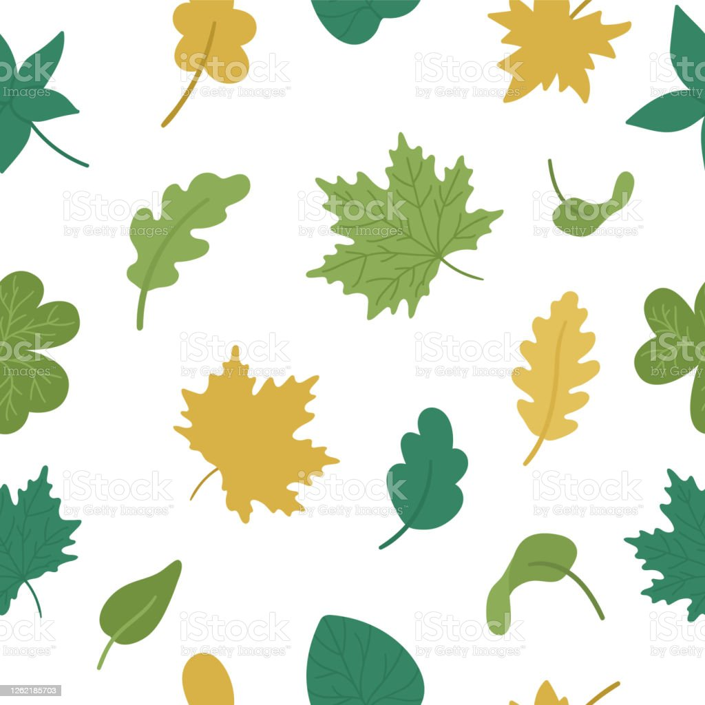 Vector Seamless Pattern With Cute Autumn Leaves Flat Style Repeat Background With Fall Greenery Funny Falling Maple Oak Chestnut Leaf Texture On White Background Stock Illustration Download Image Now Istock