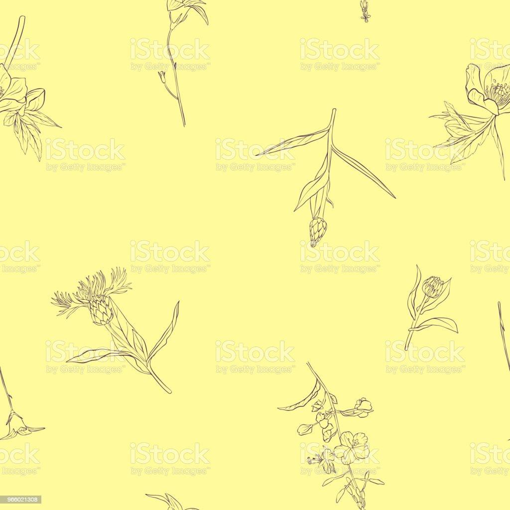 Vektor Nahtlose Muster Mit Blumen Zeichnen Stock Vektor Art Und Mehr