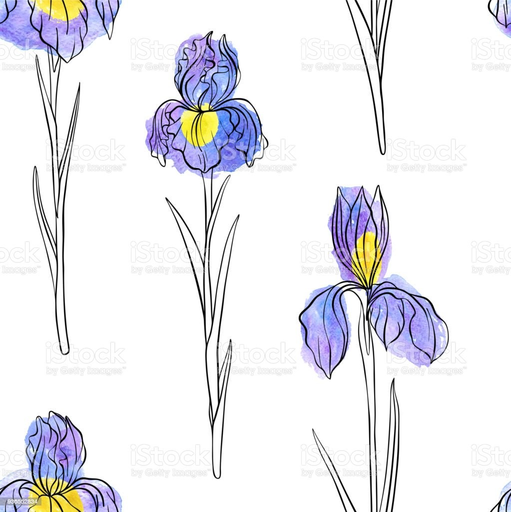 Vector seamless pattern with flowers of iris stock vector art more vector seamless pattern with flowers of iris royalty free vector seamless pattern with flowers of izmirmasajfo