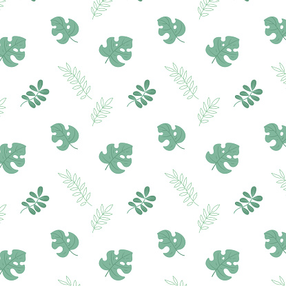 Vector seamless pattern with foliage. Green leaves of monstera and others. Print for wallpaper, packaging, textiles.
