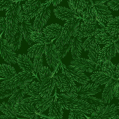 Vector seamless pattern with green pine branches.