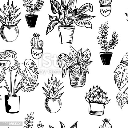 Vector seamless pattern with house plants in pots in black and white colors. Perfect for textile, wrapping, web.