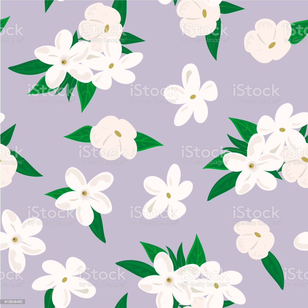 Vector seamless pattern with jasmine flowers on purple background vector seamless pattern with jasmine flowers on purple background royalty free vector seamless pattern izmirmasajfo