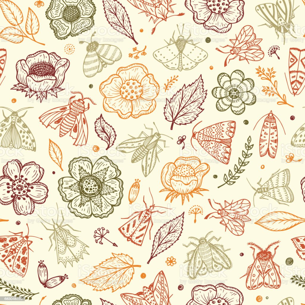 Vector Seamless Pattern with Night Butterflies and Plants. Vintage Floral Background. Hand Drawn Moths, Flowers, Leaves, Sprigs, Seeds royalty-free vector seamless pattern with night butterflies and plants vintage floral background hand drawn moths flowers leaves sprigs seeds stock vector art & more images of animal