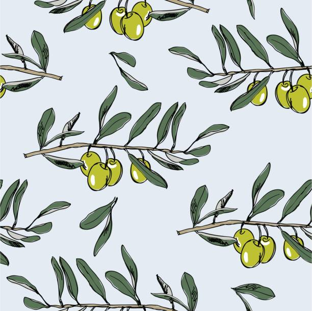 vector seamless pattern with olive branch vector seamless pattern with olive branch pacific dogwood stock illustrations