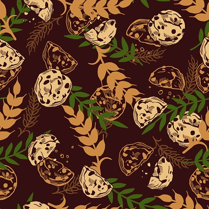 Vector Seamless Pattern with Organic Delicious Chocolate Chip Cookies Illustration