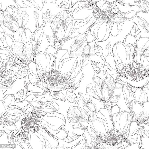 Vector seamless pattern with ornate magnolia flower buds and leaves vector id604026214?b=1&k=6&m=604026214&s=612x612&h=9slcea3pggqatj6glkdvyjlcjdxfukamatan25rskfq=