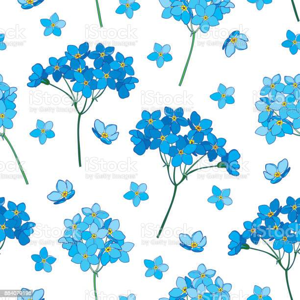 Vector seamless pattern with outline forget me not or myosotis flower vector id884079198?b=1&k=6&m=884079198&s=612x612&h=8jsc1lqnmuyw5zivsqlx pwcyazfrtvmh6tnhkbvz3g=