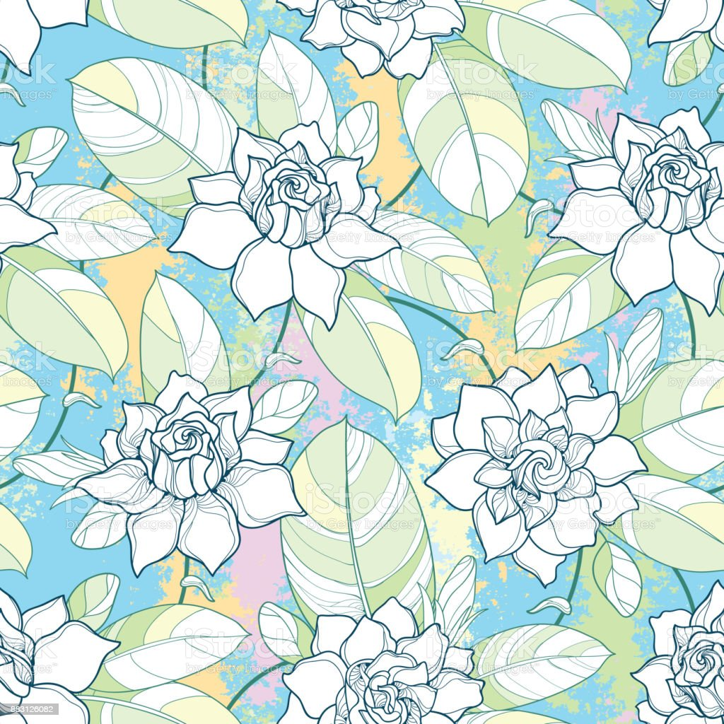 Vector seamless pattern with outline Gardenia flower in pastel color....
