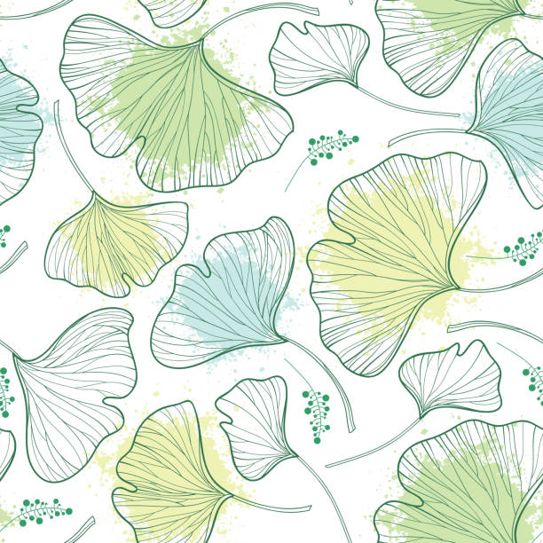 vector seamless pattern with outline gingko biloba leaves and blot in pastel green on the white background. - fossilized leaves stock illustrations
