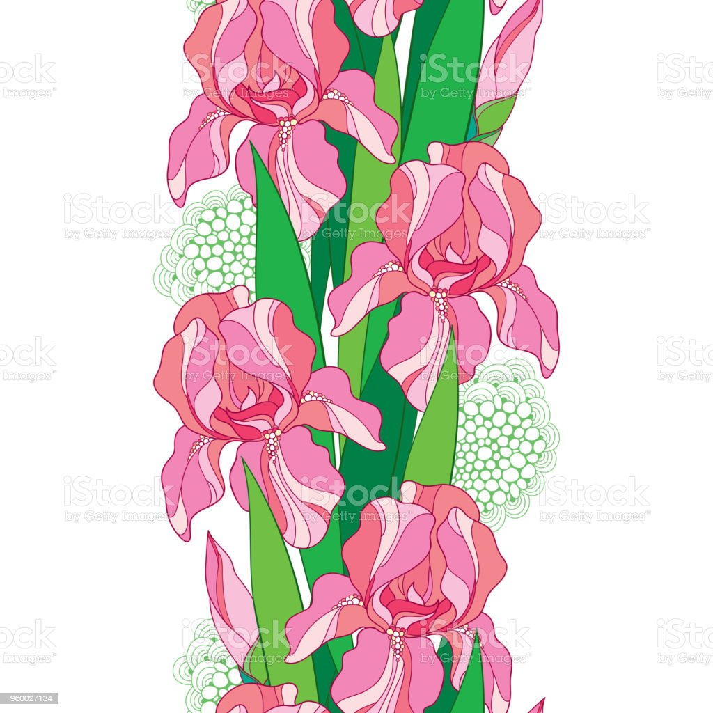 Vector Seamless Pattern With Outline Pastel Pink Iris Flower Bud And