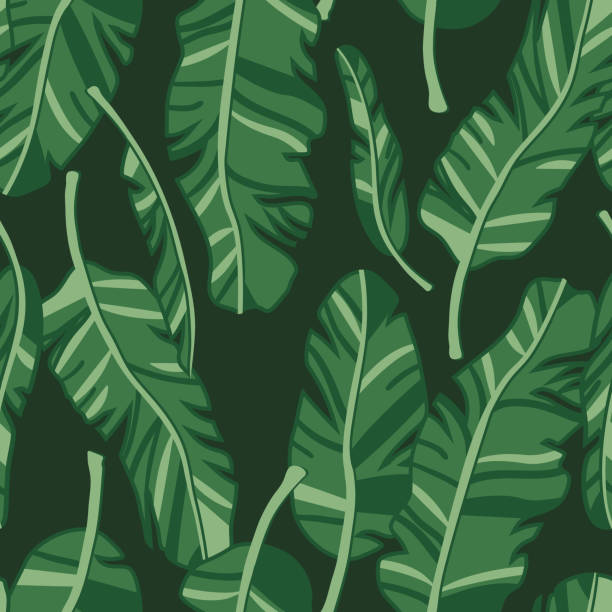 vector seamless pattern with palm leaves. graphic stylized drawing. - jungle stock illustrations