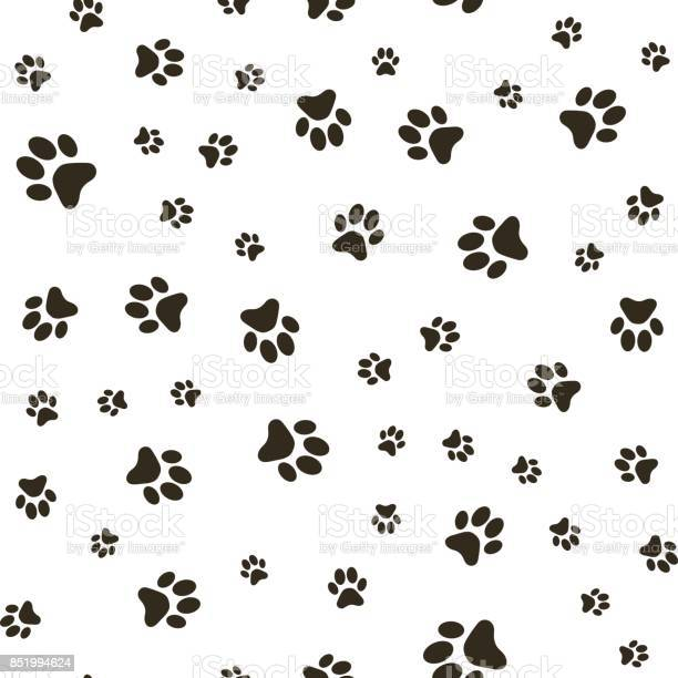 Vector seamless pattern with paw footprints of a dog stains and vector id851994624?b=1&k=6&m=851994624&s=612x612&h=iwqcpsmtfqdx3hdibmziwgrzkrivnfwfekyypm5ewc4=