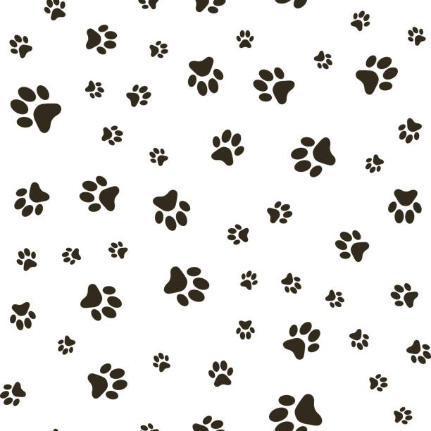 Vector seamless pattern with paw footprints of a dog (wolf), stains and smears. Vector seamless pattern with paw footprints of a dog (wolf), stains and smears. temperate flower stock illustrations