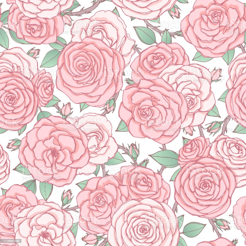 Vector Seamless Pattern With Pink Rose Flowers And Leaves On White