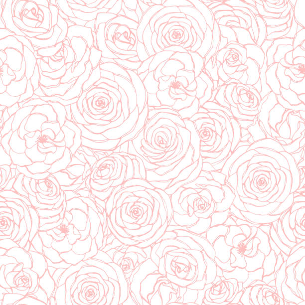Vector seamless pattern with rose flowers pink outline on the white background. Hand drawn floral repeat ornament of blossoms in sketch style. Usable for wrapping paper, covers, textile, etc. Vector seamless pattern with rose flowers pink outline on the white background. Hand drawn floral repeat ornament of blossoms in sketch style. Usable for wrapping paper, covers, textile, etc. rose flower stock illustrations