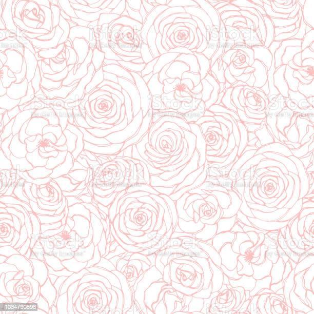 흰색 바탕에 분홍색 장미 꽃 개요와 벡터 완벽 한 패턴입니다 손으로 그린 스케치 스타일에서 화의 꽃 반복 장식 위해 종이 커버 섬유 등 사용 가능 0명에 대한 스톡 벡터 아트 및 기타 이미지