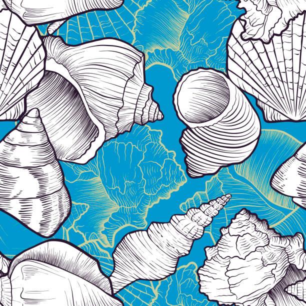 illustrazioni stock, clip art, cartoni animati e icone di tendenza di vector seamless pattern with seashells - immerse in the stars