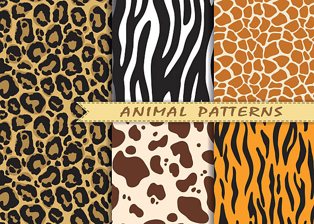 vector seamless patterns set with animal skin texture. - giraffe stock illustrations