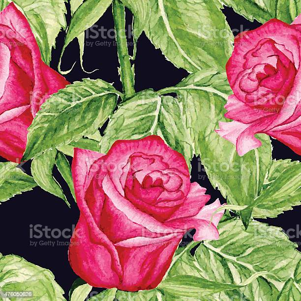 Vector seamless roses watercolor pattern vector id476050626?b=1&k=6&m=476050626&s=612x612&h=rhbmiyneg1ttombkz5sgs kyx6o86mzdhr1wshg5yx8=