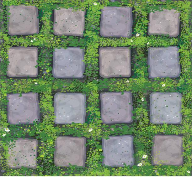 vector seamless texture gray stones  pavement. - moss stock illustrations
