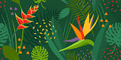 monstera, strelitzia, heliconia, leaves and floral vector print.