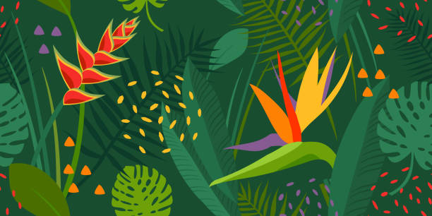 Vector seamless texture with tropical flowers and leaves, plants. Garden of Eden, forest, jungle. Print for summer clothes, beach. Green, purple, yellow, orange colors. Multicolored, contrast. monstera, strelitzia, heliconia, leaves and floral vector print. bird of paradise plant stock illustrations