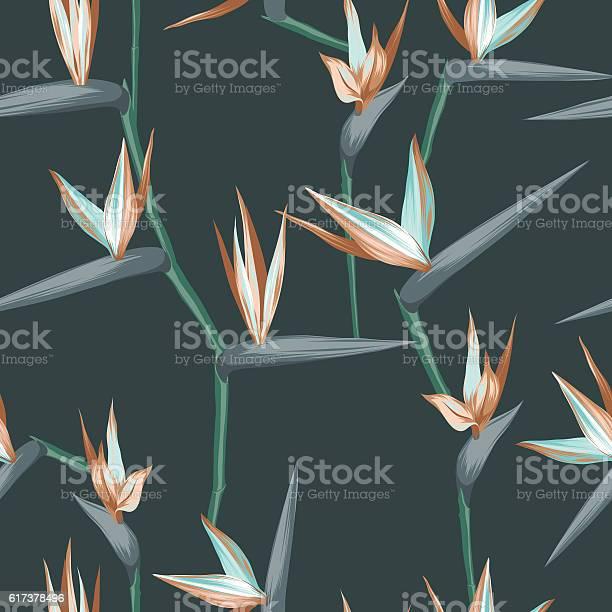 Vector seamless tropical bird of paradise plant pattern exotic flower vector id617378496?b=1&k=6&m=617378496&s=612x612&h=w3brrus  xpsqkzua1 oa4jncndy0kct7xdlqvcusri=