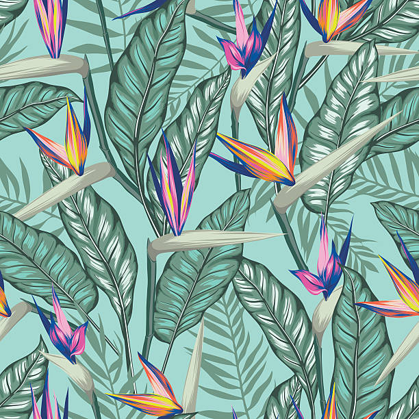 vector seamless tropical bird of paradise plant pattern with leaves vector seamless tropical bird of paradise plant pattern with leaves, exotic flower blooming in summer. modern graphical floral background allover print. all elements are separate and editable. bird of paradise plant stock illustrations