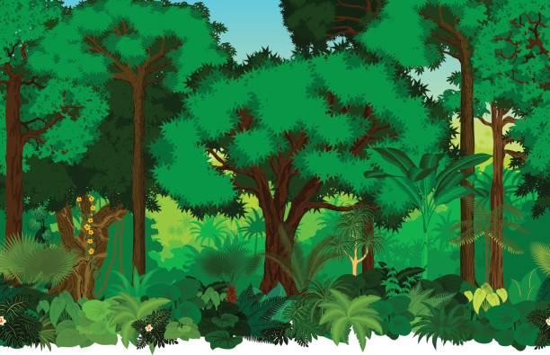 Vector seamless tropical rainforest Jungle background pattern illustration Vector seamless tropical rainforest Jungle background pattern illustration amazon stock illustrations