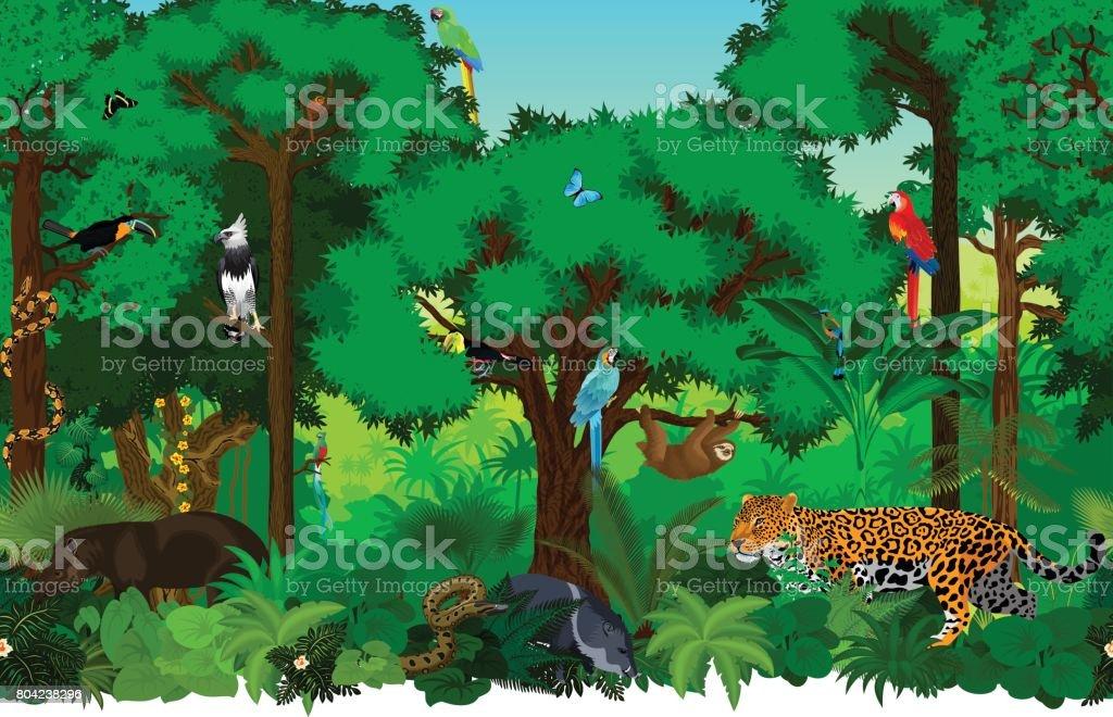 Vector a ilustração de padrão de fundo sem emenda da floresta tropical selva com animais - ilustração de arte em vetor