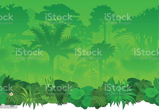 Vector seamless tropical rainforest jungle background vector id617753326?b=1&k=6&m=617753326&s=612x612&h=waypnerweetqudsgflqm06togc yopcd0cdj9l9tqv4=