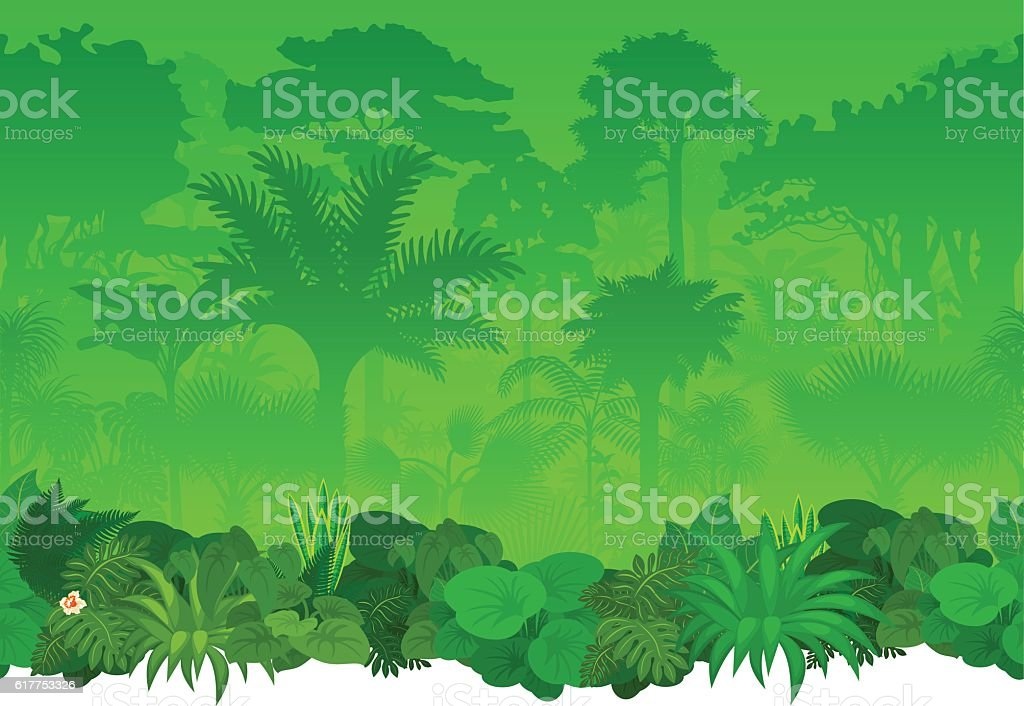 Vector seamless tropical rainforest Jungle background vector art illustration