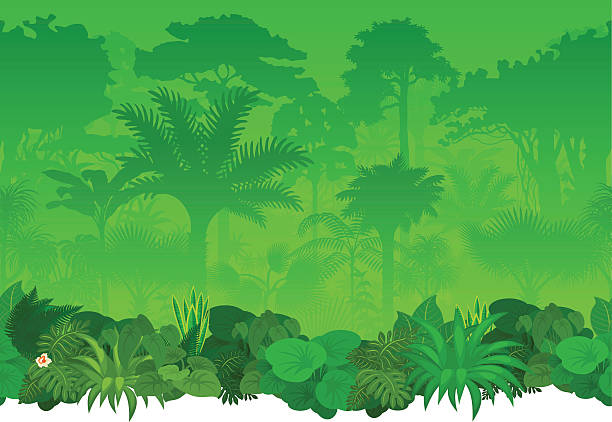 Best Jungle Illustrations, Royalty-Free Vector Graphics ...