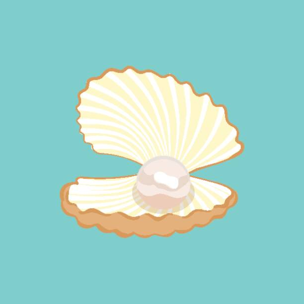 Royalty Free Pearl Shell Clip Art, Vector Images ...