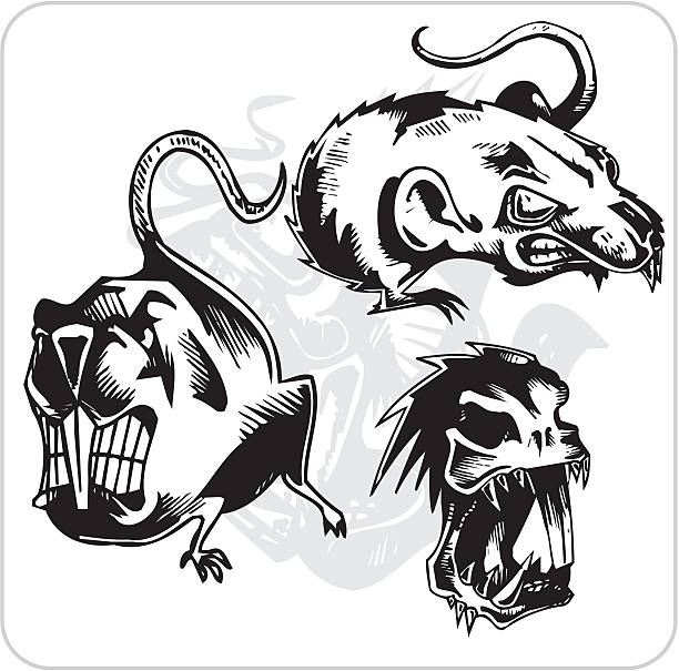 Mean Rat Illustrations, Royalty-Free Vector Graphics