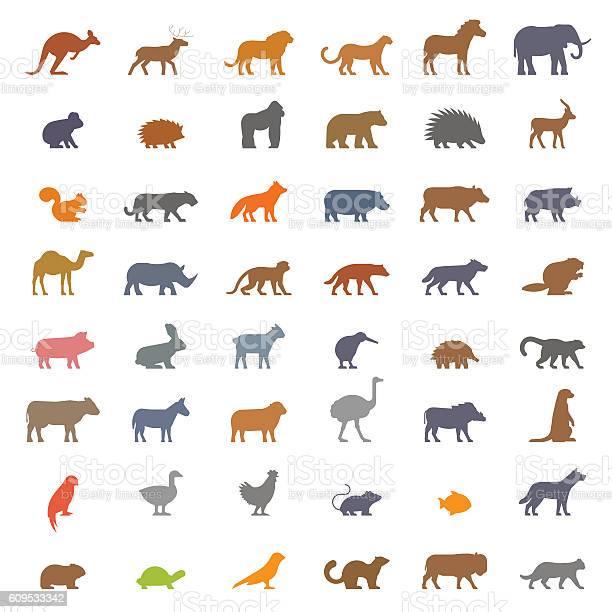 Vector set figures of farm and wild animals vector id609533342?b=1&k=6&m=609533342&s=612x612&h=mqsr7dbc5d m07hsrempo8rkrydqbyh5bkwigvvkrrg=
