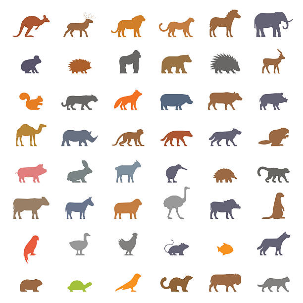 Vector set figures of farm and wild animals - ilustración de arte vectorial
