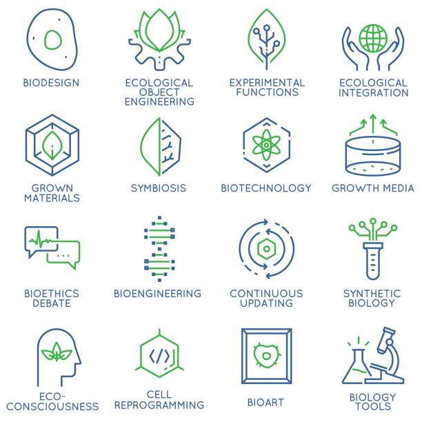 ilustrações de stock, clip art, desenhos animados e ícones de vector set of 16 linear thin icons related to bio design, biotechnology and bioengineering. mono line pictograms and infographics design elements - durabilidade