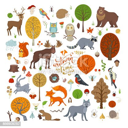 Adorable collection for children books, invitations and posters. Beaver, deer, fox, hedgehog, owl, rabbit, raccoon, snail, squirrel, bee, ant, mushroom.